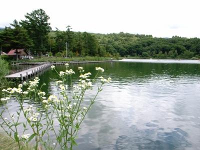 蓼科湖湖畔.jpg