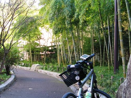 takaido6IMG_0549.JPG